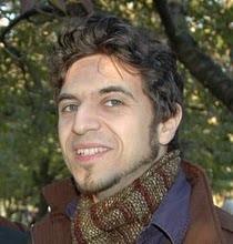 David E Stein